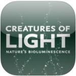 Creatures of Light